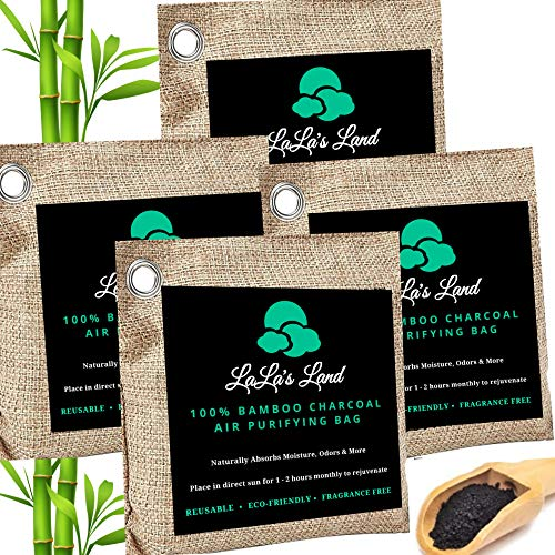 Charcoal Bags Odor Absorber - Premium Bamboo Charcoal Air Purifying Bags 800g (4 Pack), Natural Air Purifying Freshener, Odor Eliminator for Closet, Room, Car, Shoes & Pets, Gift Box Packaging & Ebook