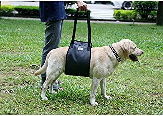 Heavy Duty Nylon Dog Lift Support Harness Assist Sling for Injury Disable Elderly Dogs..