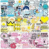 100 VSCO Stickers, Aesthetic Stickers, Cute Stickers, Laptop Stickers, Vinyl stickers, Stickers for Water Bottles, Waterproof stickers, stickers for kids teens, Christmas teen girl gifts sticker packs