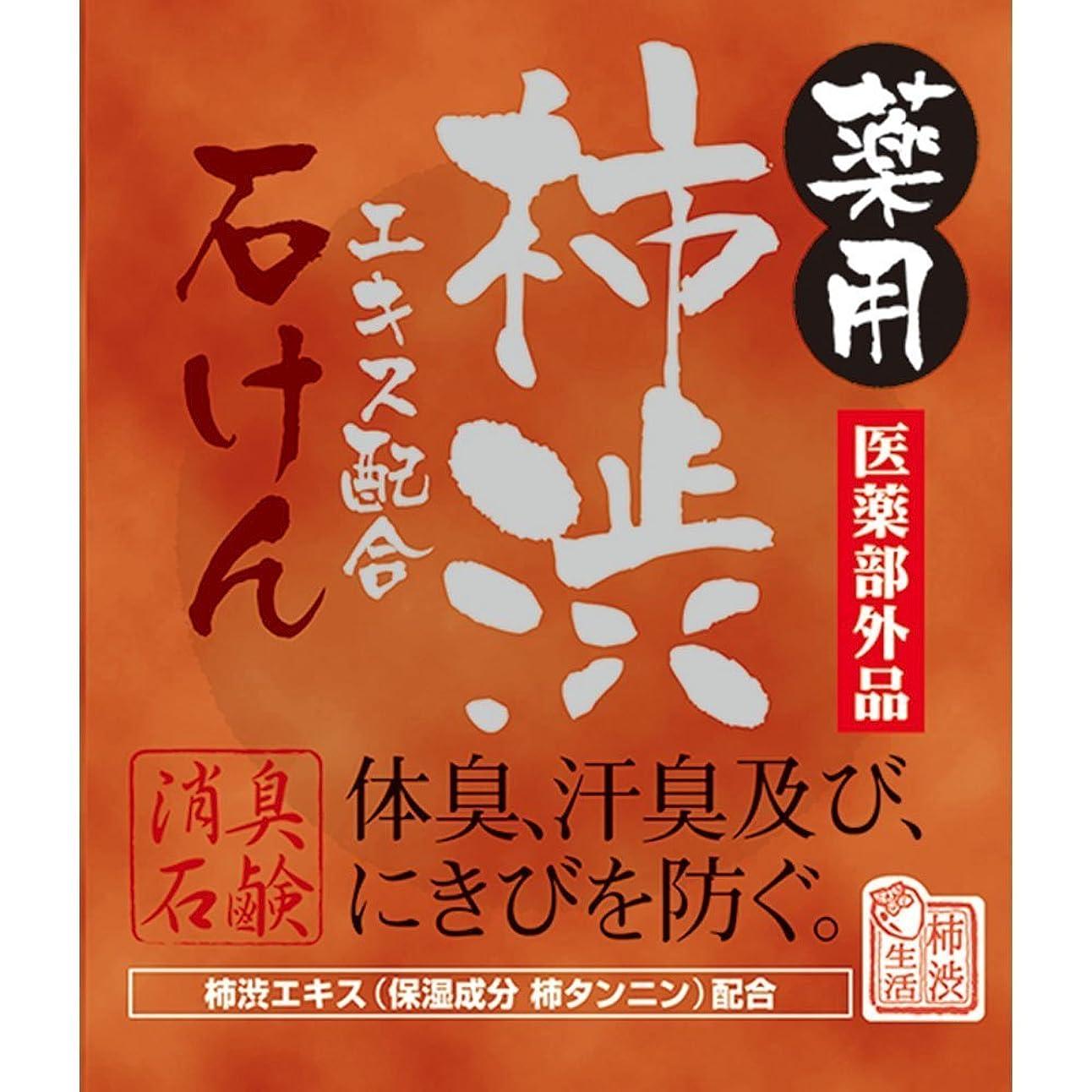 レベル木分薬用柿渋石けん 100g×2個