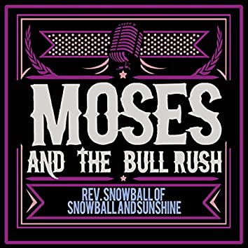 Moses and the Bull Rush