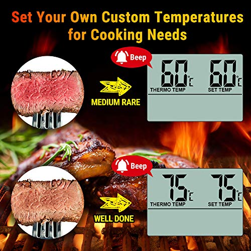 ThermoPro TP16 Digital Kitchen Probe Thermometer for Oven Smoker BBQ Meat Jam Candy Oil Thermometer for Deep Frying with Timer Alarm