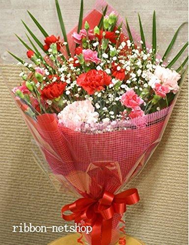 母の日 5/6から5/9のお届け 生花 カーネーションとかすみ草の花束 FL-MD-02