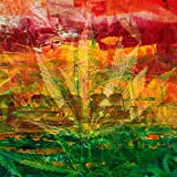 Drug Rugs and Weed Nugs (feat. Tren10) [Explicit]
