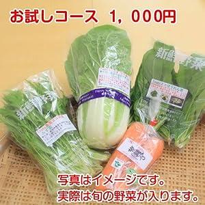 楽農やおすすめの旬野菜セット お試しコース