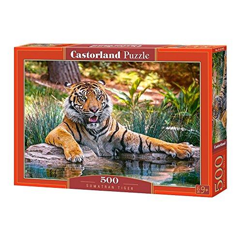 Castorland- Sumatran Tiger - Puzzle (500 Piezas), diseño de Tigre, Color carbón (B-52745)