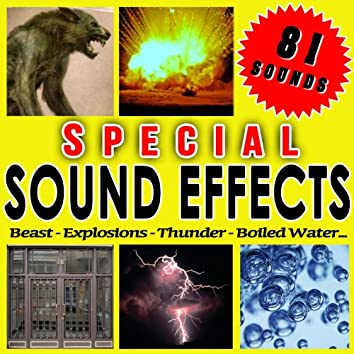 Beast, Explosions, Thunder, Boiled Water... Special Sound Effects