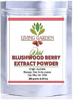 Living Garden Blushwood Berry EBC-46 250 Grams: Wild Blushwood Berry Extract Powder