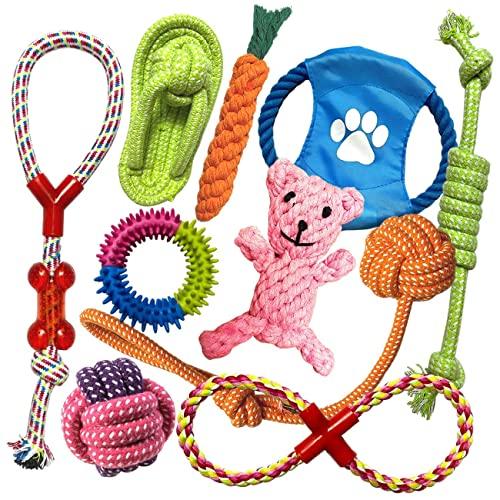 TINGERIA® Hundespielzeug für kleine & mittelgroße Hunde, 10-teiliges Welpenspielzeug Set, Hunde Spielsachen Zubehör, interaktive Hunde Spielzeug Intelligenz