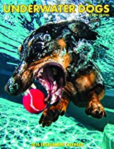Underwater Dogs 2016 Engagement Planner Appointment Calendar