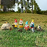 Gartenzwerge, 1Set Gartendeko Figure, Garten Figuren, Gartenstatuen, Gartendeko Zwerg Figure aus Harz, für Haus, Garten Balkon Terasse Dekoration (Multicolor)