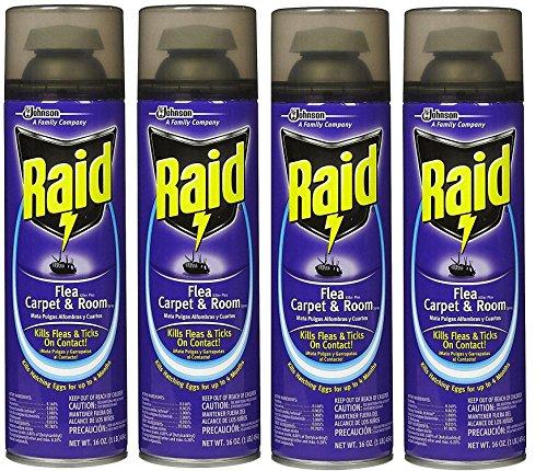 Raid Flea Killer Carpet and Room Spray, 16 OZ (Pack - 4)