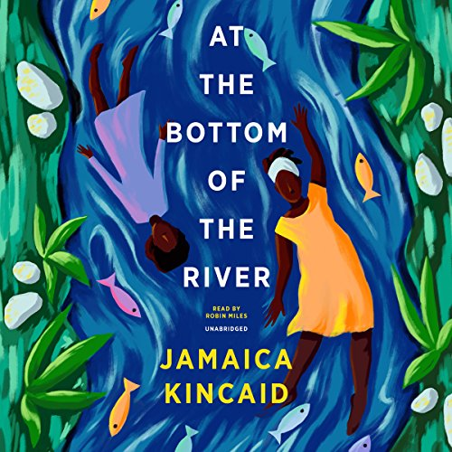 At the Bottom of the River audiobook cover art