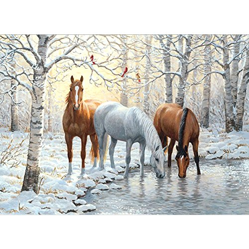 Greatmin Diamond Painting Kit, 5D DIY with Round Full Drill Accessories, Horse Home Wall Decorations 15.7 X 11.8 Inch