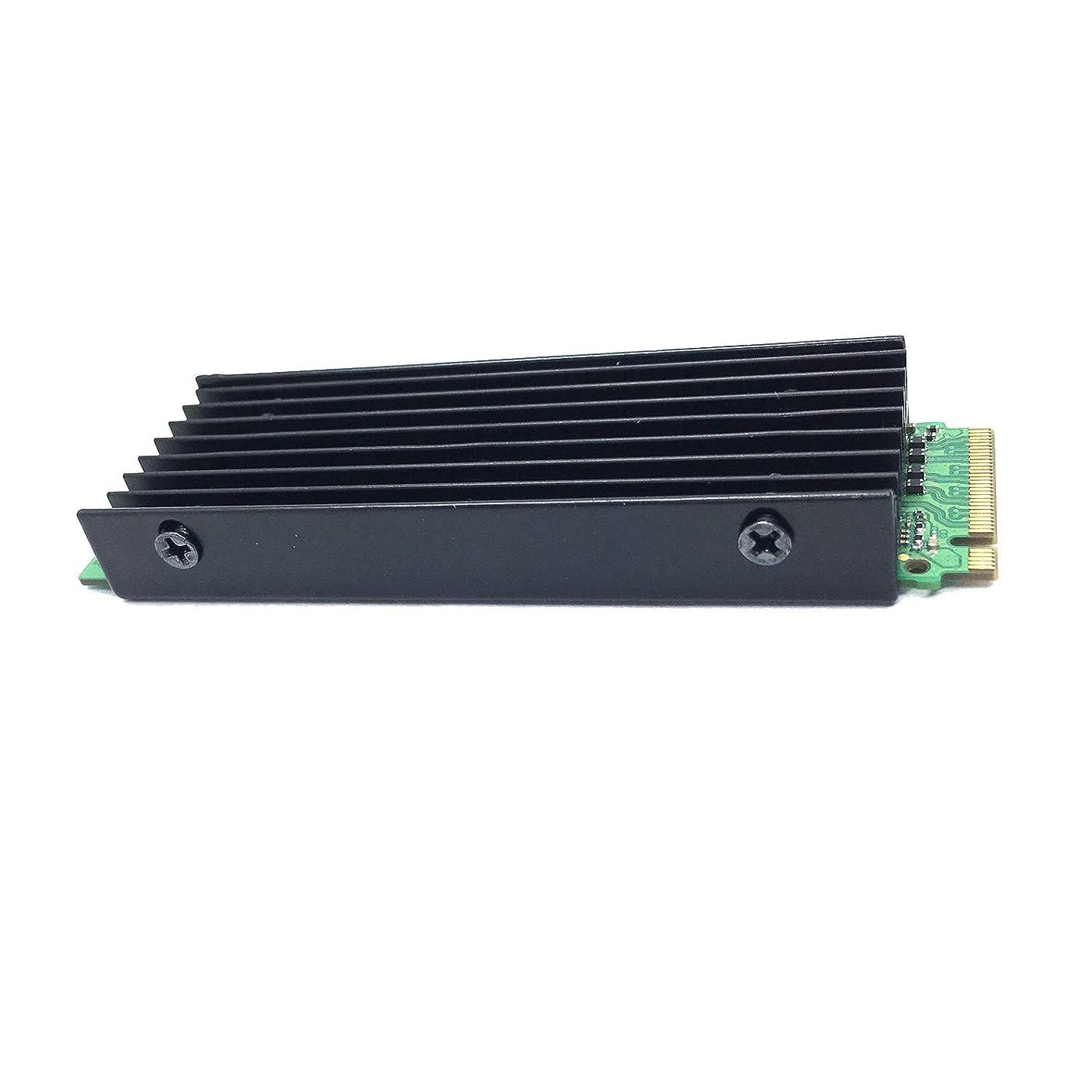 PCIe NVMe M.2 SSD Heatsinks Cooler with Thermal Pad (Black)