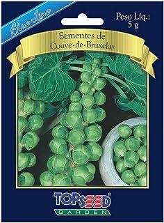 Sementes De Coentro Português 5g Topseed