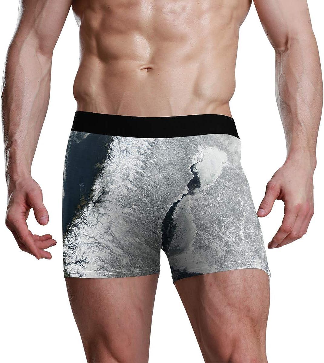 Seasonal Print Briefs Soft Snow Winter Wave Ice Weather Arctic Underwear Boxer