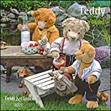 Teddy 2021 - Broschürenkalender - Wandkalender - mit herausnehmbarem Poster - Format 30 x 30 cm