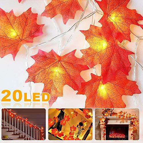 Nasharia 20 LED Ahornblatt Lichterketten, Herbst Blättergirlande, Wasserdicht Herbstgirlande mit 2M herbstdekoration Pumpkin Garland, Deko für Thanksgiving Halloween Weihnachten Balkon