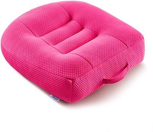 WANGXN Sitzkissen mit Handle-Car-Saat für Rückenschmerzen