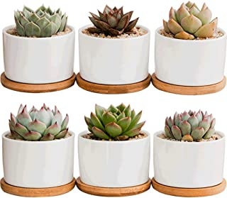 Succulent Pots, Krisami White Mini 3.15-inch Ceramic Flower Planter Pot with Bamboo Tray, Small Plants Ceramic Flowerpot, ...
