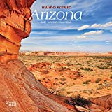 Arizona Wild & Scenic 2021 7 x 7 Inch Monthly Mini Wall Calendar, USA United States of America Southwest State Nature