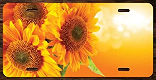 Best sunflower front license plate Reviews