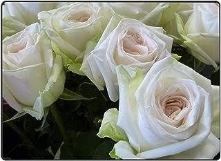 FANMIL White Ohara Garden Rose Indoor/Outdoor Door mat Bathroom Kitchen Rug Welcome Doormat