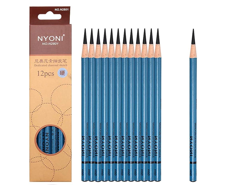 Professional Sketching Pencils Set, Sketch & Drawing Pencils Art Tool Set 12B 10B 8B 7B 6B 5B 4B 3B 2B B HB 2H 4H 6H Art Supplies (12pcs-Hard- Black)