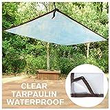 STTHOME Toldo Exterior Impermeable, Transparente Impermeable Lona de Protección Impermeable/A Prueba de Viento/A Prueba de Polvo/A Prueba de Lluvia Exterior PE Toldo (Size : 2x5m)