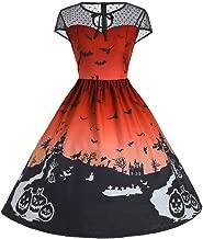 Women's Halloween Audrey Hepburn Bat Black Castle Print Mesh Sleeveless Empire Waist Vintage Flared Swing Pleated Dress
