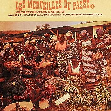 L'Afrique Danse - Les merveilles du passé