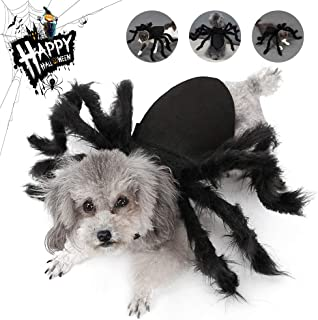 Dog Spider Costume Halloween Cosplay