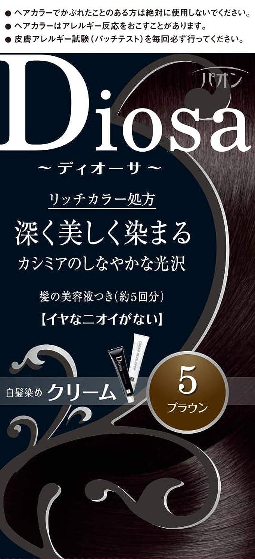 スキーラグ足枷パオン ディオーサ クリーム 5 ブラウン 40g+40g 髪の美容液10g