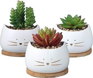 Koolkatkoo 3.2 Inch Cute Cat Ceramic Succulent Planter Pots with Removable Saucer Unique Cactus Planters Porcelain Decorative Flower Pot for Cat Lovers Set of 3 White