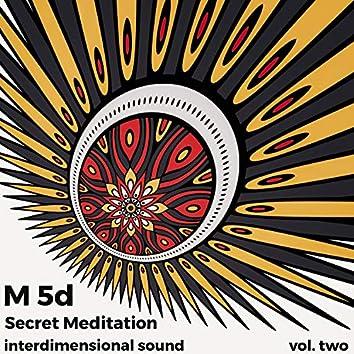 Secret Meditation, Vol.2
