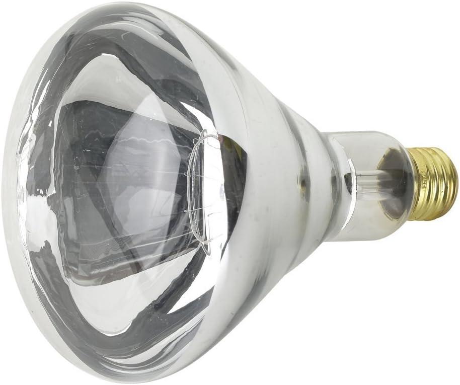 Feit 推奨 Electric 250R40 1 定番スタイル 250 Heat Clear Lamp Watt