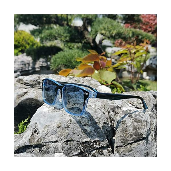 AMZBSR Polarized Sunglasses Classic TR90 Unisex Stylish Vintage Sun Glasses Fashion For Men/Women with Spring Hinges