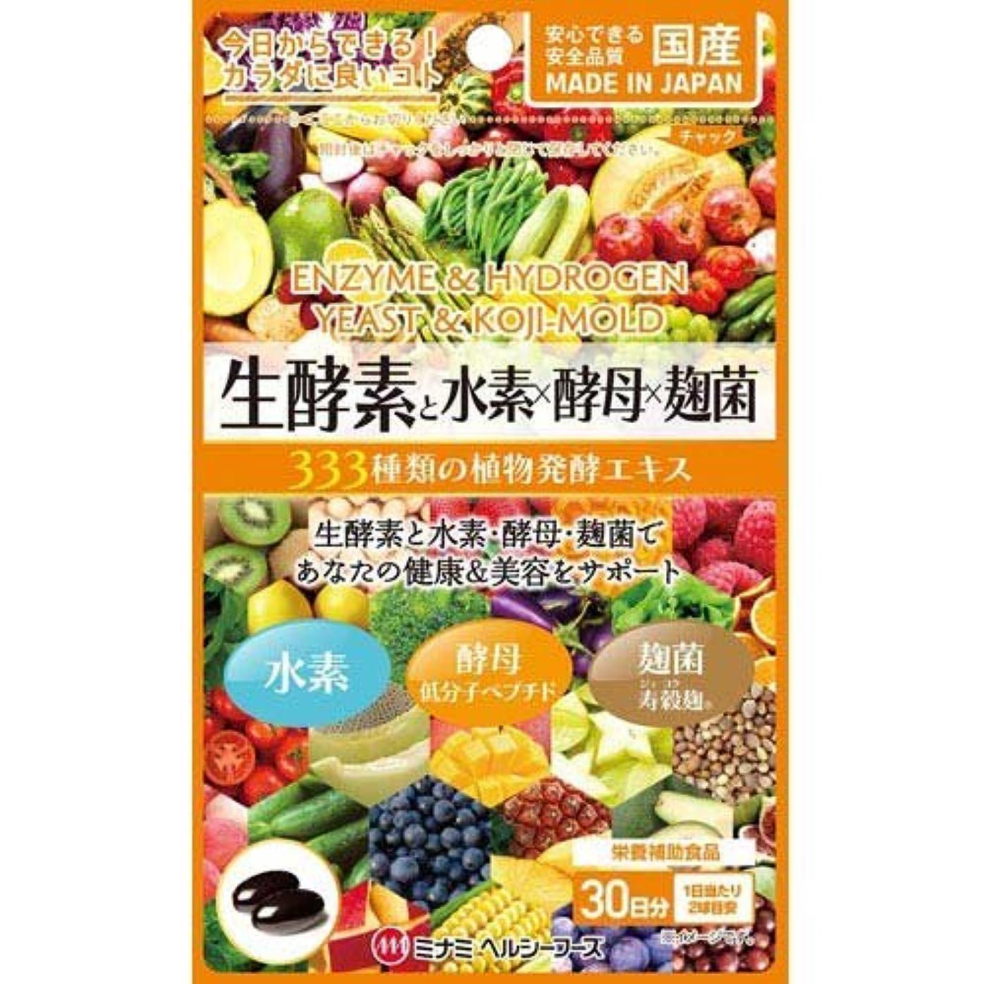 平和的克服する磁気ミナミヘルシーフーズ 生酵素と水素×酵母×麹菌 60球