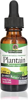 Nature's Answer Plantain Leaf Extract with Organic Alcohol, | Promotes Healthy Skin