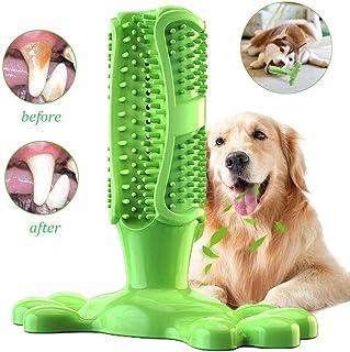 GingerUP Cepillo de Dientes en Perro Jugar - Dog Brushing