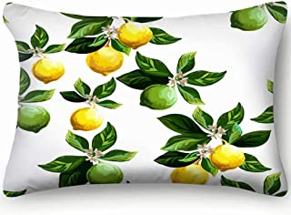 shower curtain doormat Zippered Pillow Covers Pillowcases 20X30 Inch Citrus Pattern Lemon Fruits Pillow Cases Cushion Cover for Home Sofa Bedding Bed Car Seats Decor