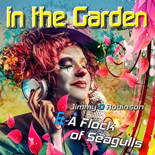 Jimmy D Robinson & A Flock Of Seagulls