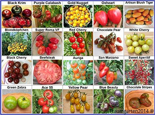 Tomaten Set 1: Tomatensamen 20 Arten je 10 Samen alte Sorten Saatgut Fleischtomate Cherrytomate Cockteiltomate Rispentomate Freilandtomate