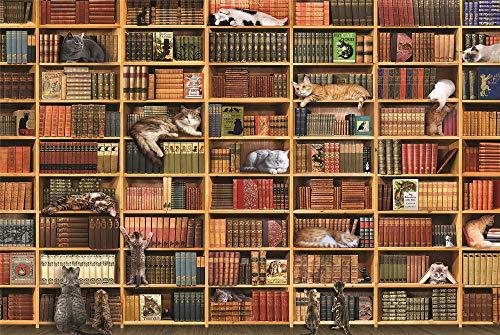 Paint by Numbers, Estantería De Gato, Cuadro Para Colorear Lienzo Set, Decoración Del Hogar, 40X50Cm With Frame