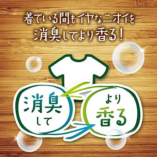 ボールドジェルボール香りつき洗濯洗剤グリーンガーデン&ミュゲ本体16個入