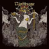 Songtexte von Nightrage - The Venomous
