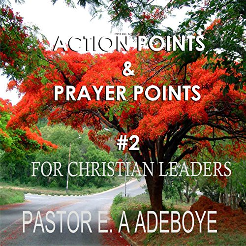 Action Points & Prayer Points for Christian Leaders, Part 2 audiobook cover art