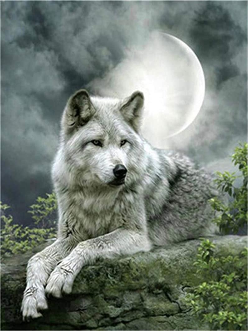DIY Oil Painting Paint by Number Kit for Kids Adults Beginner 16x20 inch - White Wolf, Drawing with Brushes Christmas Decor Decorations Gifts (Without Frame)