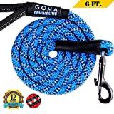strong reflective leash suitable for large dogs